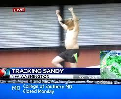 horse hurricane sandy humor